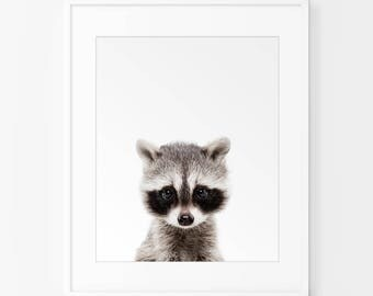 Raccoon Print, Nursery Wall Art, Woodland Nursery Decor, Nursery Animal Wall Art, Raccoon Print Wall Art, Woodland Animals,Nursery Art Print