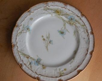 Haviland Limoges & GDA Plates