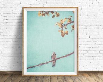 "bird photograph, instant download printable art, large art, large wall art, printable wall art, nature prints, wall art, art - ""Little Bird"""