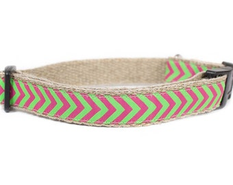 Dog collar / leash CHEVRON GREEN PINK