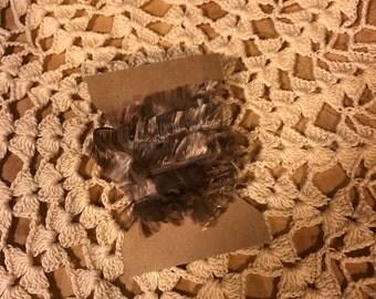 Brown Multi Colored Feather trim