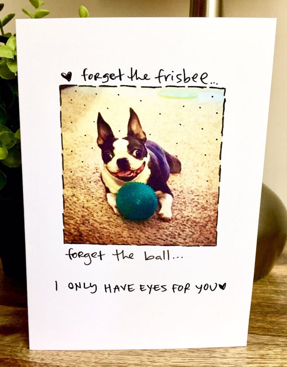 I love you Card, Funny Just Because card, Boston Terrier Card, I only have eyes for you card, dog love card, paper anniversary