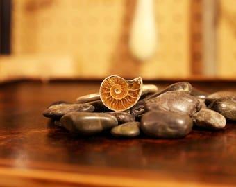 Sterling Silver Ammonite Cuff