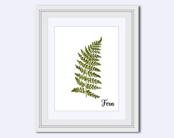 fern leaf print - fern print - Modern wall art - leaf Wall Art - Printable Art - leaf decor - wall art printable - printable wall decor