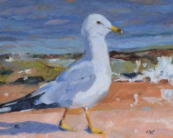 Seagull wildlife art bird painting