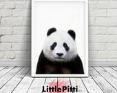 Panda print, children bedroom art, panda wall art, panda bear, panda nursery art, printable kids gift, digital print, nursery animal print