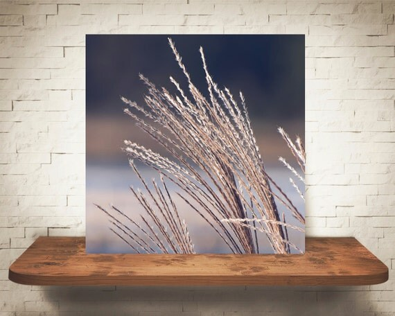 Decorative Grass Photograph - Fine Art Print - Home Wall Decor - Brown & Blue Pictures - Lake House Decor - House Warming Gifts - Bathroom