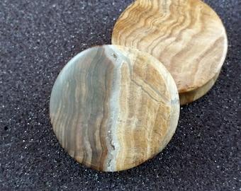 38mm (1 1⁄2 Inch) Petrified Wood Plugs.