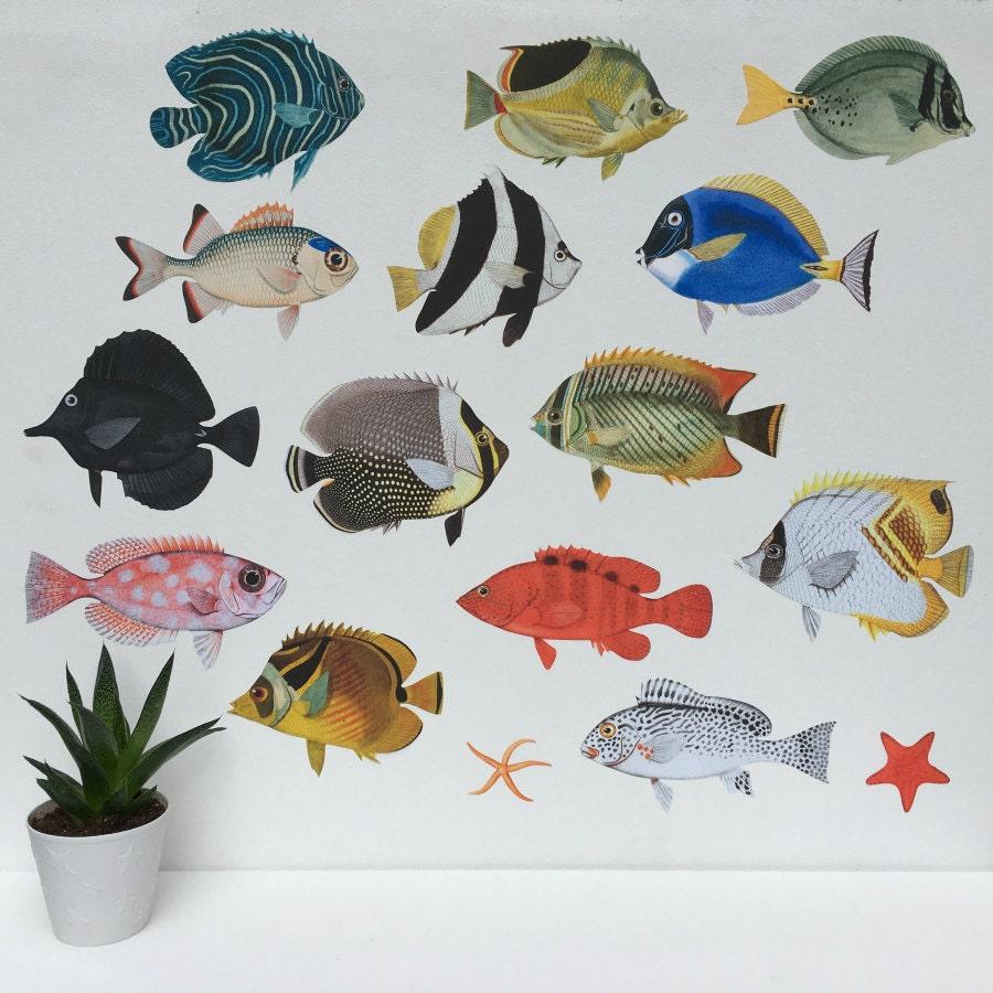 tropical fish aquarium wall stickers fish wall sticker. Black Bedroom Furniture Sets. Home Design Ideas