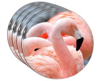 Proud Pink Flamingo Acrylic Coaster Set Of 4