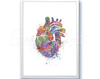 Heart Watercolor Art Print  - Heart Anatomy Watercolor Art Painting - Anatomy Poster - Science Art - Anatomy Art