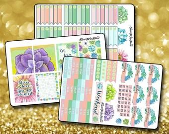 Sweet Succulents - Vertical Planner Stickers Erin Condren Life Planner  ECLP Colorful Watercolor Spring Summer Stickers