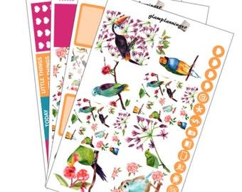 Full kit - Bright and beautiful birds
