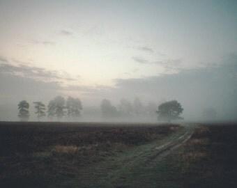 Misty morning - Landscape - Morning Mist - Veluwe - Fine Art - Photography - Mood photo - Color
