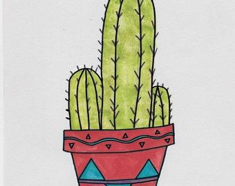 Cactus in a Terracotta Pot