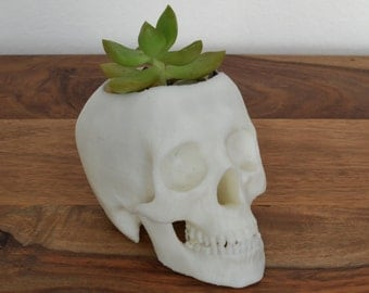 Skull 3d Printed Succulant Planter Votive, Black Friday, Cyber Monday