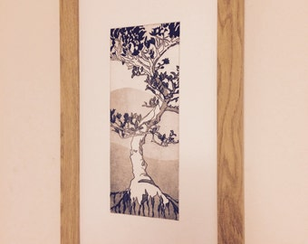 Etching Print - Japanese Holly Bonsai Tree with roots. Printed on Somerset Paper.