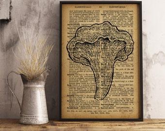 Mushroom Wall Art, Mushroom Dictionary Art Print, Mushroom Poster, Mushroom Print, Mushroom Cotton Canvas Decor, Office Decor  (G06)