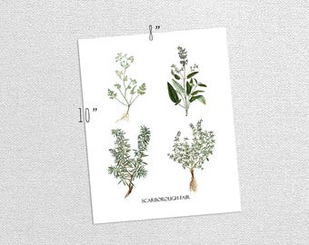 Printable Vintage Aromatic Herbs Parsley Sage Rosemary Thyme Nature Art