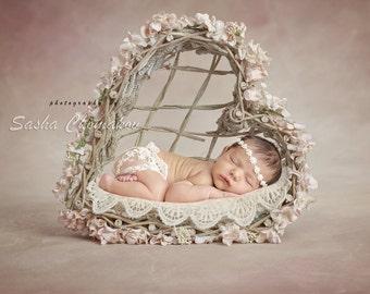 digital backdrop  background newborn baby girl  basket heard Valentine's day flowers