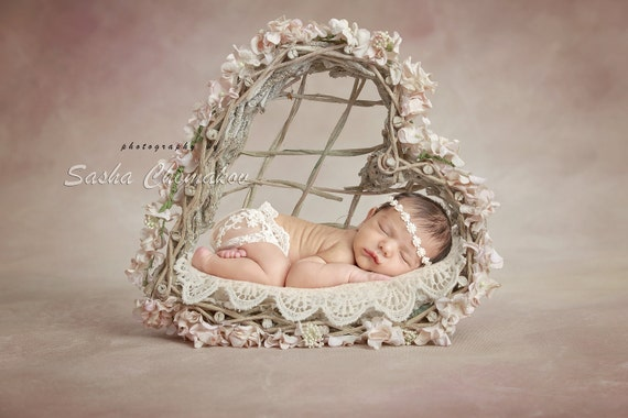 digital backdrop background newborn baby girl basket heard