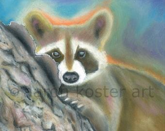 Raccoon art, Raccoon print, Raccoon painting, Animal prints, Raccoon decor