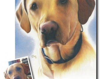 Custom Pet Portraits - Dog, Cat, Horse Drawings in Colored Pencil