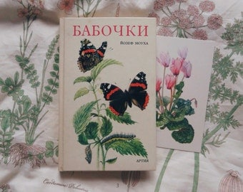 Vintage book with butterfly illustrations, reference book