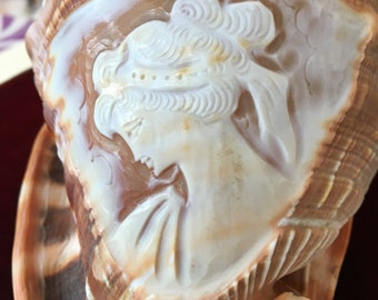 Conch shell cameo   Large conch shell with beautiful woman's face carved into the shell