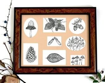 Autumn // winter // hand drawn // original // framed print // botanical