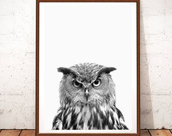 Woodlands Wall Art, Owl Wall Print, Owl Wall Decor, Owl Printable Art, Bird Wall Art Print, Bird Prints, Owl Poster, Woodlands Owl Print