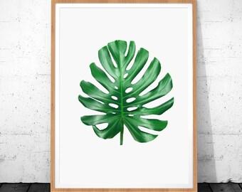 Monstera Print, Tropical Leaf, Green Leaf Print, Botanical Print, Tropical Leaves, Gorgeous Monstera, Leaf Wall Print Art, Botanical Art
