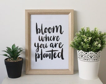 Bloom Where you are Planted Print - Inspirational Quotes - Motivational Quotes - Calligraphy Print - Hand Lettering - Trudy Letters