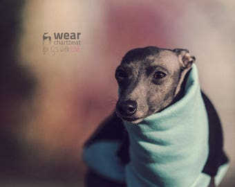 Italian greyhound clothing - blue comfortable jumper for iggy / fits perfect