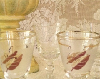 Cordial  Glass Set of Four Two Designs