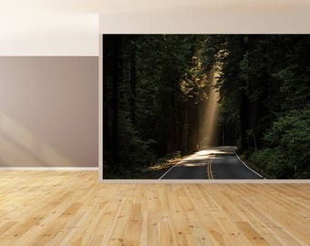 Wall Art Sunlight on Road Wallpaper HUGE