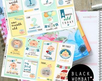 Baby Boy Milestone Planner Stickers - Erin Condren - MulberryPOP - Various Planners