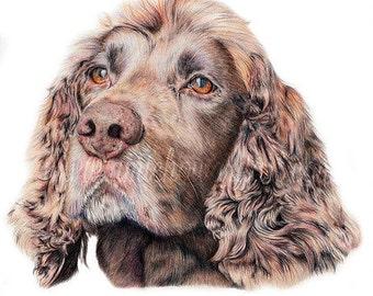 Custom Pet Portrait, Dog Portrait, Pet Portrait, Pet Portrait Artist, pet portrait custom, pet lover gift, pet memorial, pet drawing