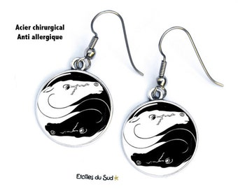 Earrings cabochon horses, yin and yang, black and white, surgical steel hooks, ref.170