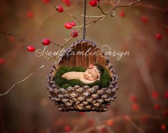 Winter Outdoor Newborn Digital Backdrop Photography - Pine Cone