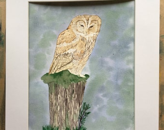 "Tawny owl watercolour in 8x10"" mount"