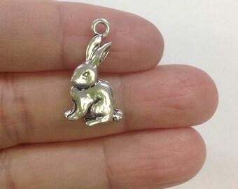 6 Rabbit Charm, Hare Charm, Bunny Charm