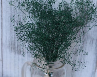 forest green dried baby breath bunch, small bunch real dried gypsophila. dried green flowers