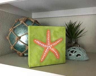 Starfish Shimmer