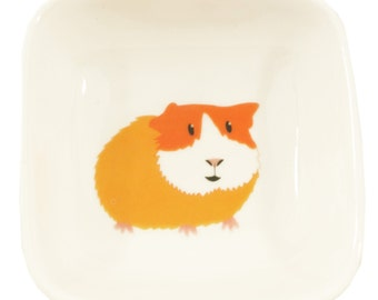 Little guinea pig dish