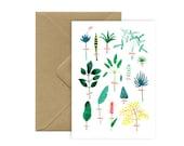 Card A6 - Herbarium