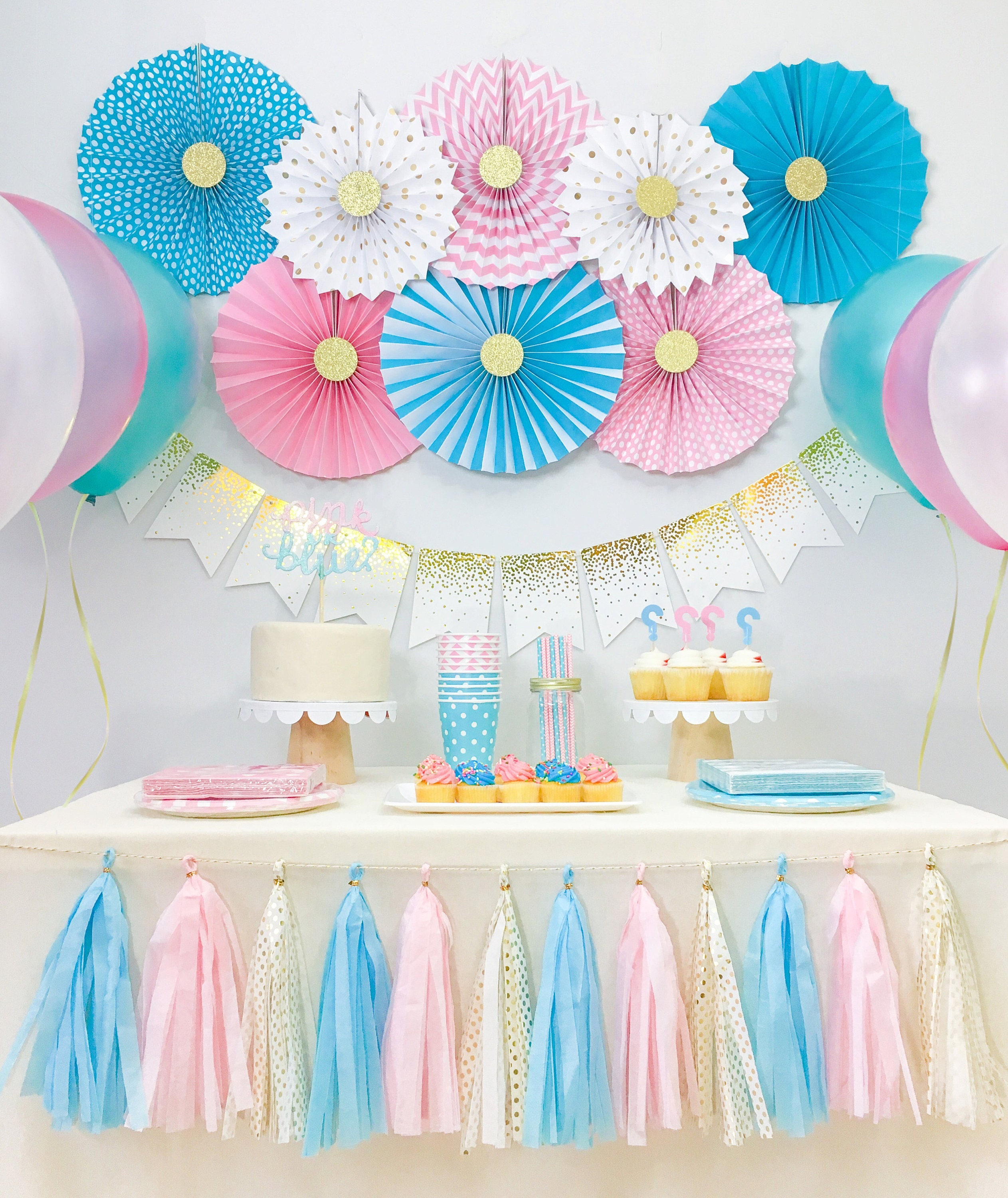 Gender reveal baby shower decorations boy and girl twins for Baby shower decoration ideas for twin boys