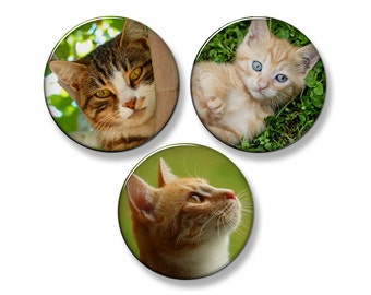 "CATS & KITTENS Fridge Magnet Set - 3 Large 2.25"" Round Magnets (Set #1)"