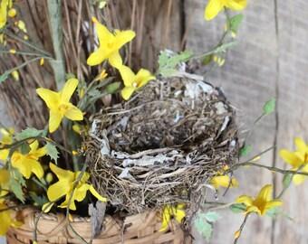 Real Bird Nest, All Natural nest, Bird's Nest, Bird Nest, Decrative Nest, Floral Accent