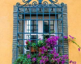 Flower Decoration, Siena, Italy, Photographic Print, City, Siena Photography, Siena Print, Italy Photo , Siena Photo, Siena Italy Print